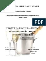 Proiect Vin Spumant - Copy