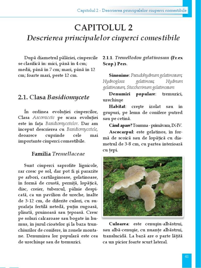 parazit de ciuperci putred)