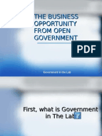 Business Opportunity From Open Government