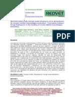 forraje verde hidroponico(2)