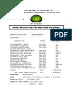 Informe Final 2003
