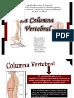 Columna Diapo