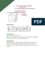 calcul de arii si volum 3