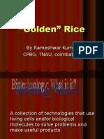 Golden Rice1