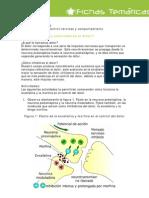 Control Nervioso y Comportamiento_estud
