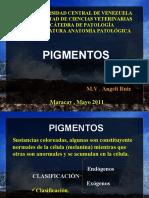PIGMENTOS EXÓGENOS