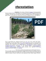 Deforestation Final