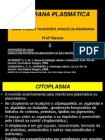 4- Membrana Citopasma Citoesqueeto Transporte Endocitose e Exocitose