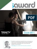 Arts Award Guide 2011 8.11.10