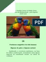 Mecanismos da Mediunidade Cap.16 - André Luiz - Chico Xavier e Waldo Vieira