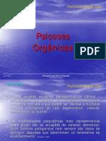 psicoses_organicas_1_13