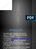 Tata Steel (2)