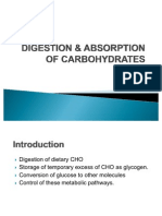 DIGESTION & ABSORPTION OF CARBOHYDRATES