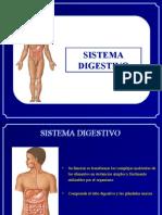 7. Martes 10 Mayo - Sistema Digestivo