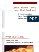 Combustion Flame
