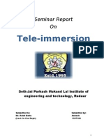Tele Immersion Report