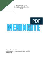 meningite trabalho definitivo