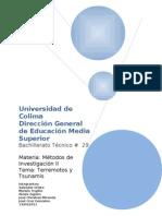 Protocolo Universidad de Colima