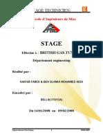 Rapport de Stage 2008 HEDI ENIS