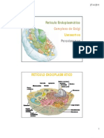 reticulo endoplasmatico-golgi - Lisossomos e Peroxissomos