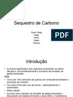 Sequestro de Carbono apresentação