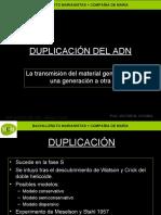 duplicacindeladn-091103082715-phpapp02