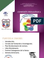presentacion comisión pedagogica