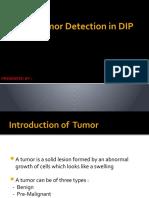 Brain Tumor Detection