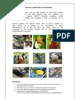 Aves en El Territorio Ecuatoriano