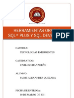 Herramientas Oracle SQL Plus SQL Developer