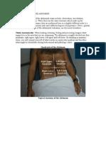 Examination of the Abdomen