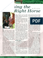Choose Right Horse