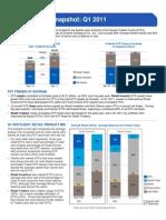 ETF Investor Snapshot Q1 2011-1