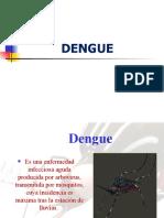 Dengue 2010