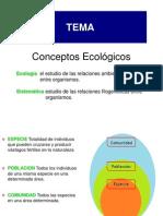 CV 13 Ecología rev 2011