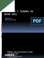 El terremoto y tsunami de Japón