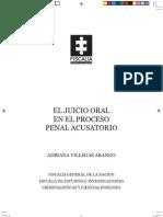 El Juicio Oral En El Proceso Penal Acusatorio