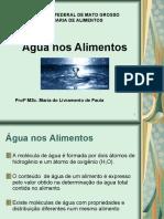 ÁGUA  NOS ALIMENTOS 13-04-09