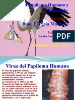 Virus Del Papiloma Humano y