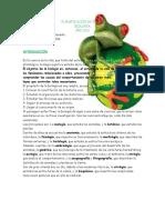 PLANIFICACIÓN DE Biología3º AÑO