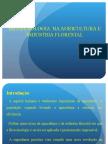Biotecnologia na agricultura e industria florestal