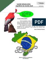 1º SAÚDE BRASILEIRA