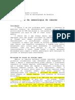 nocoes_imunologia_oncologia