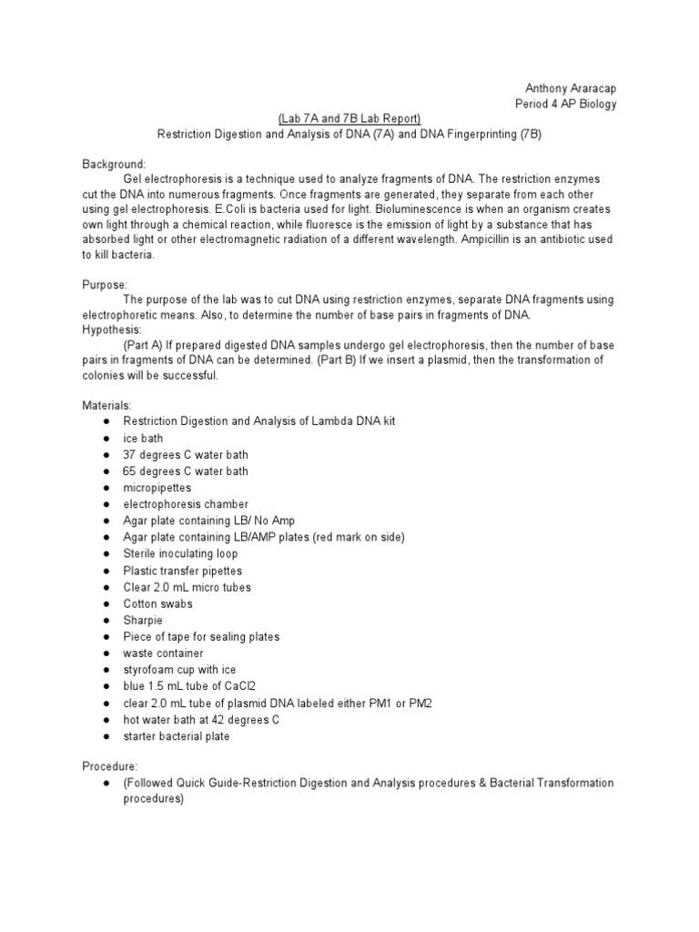 plasmid transformation lab report