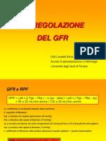 Regolazione GFR e FPR