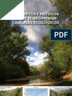 Conceptos y métodos sobre el régimen de caudales ecológicos