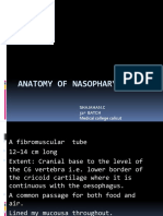 Anatomy of Nasopharynx