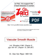 Vascular Smooth Muscle