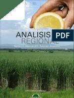 Analisis Regional N9-Fundación del Tucumán