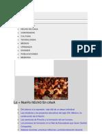REPENSAR LOS PROCESOS INSTITUCIONALES PARA LA FORMACIÓN DE PROFESIONALES